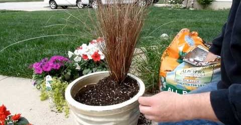 Container Gardening Idea Fun With Flowers EasyGardeningVideos